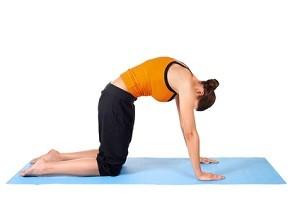 Pilates oefeningen rug